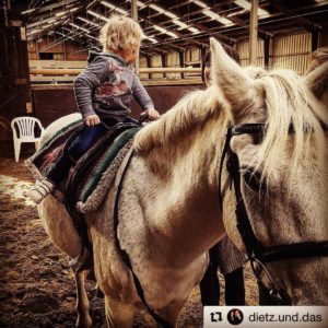 reittherapie mit gizmo rideon angelmansyndrome tochter ridingmypony pony happy shandrehellip